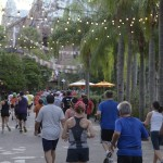 Runners trek through Disney's Animal Kingdom. Photo courtesy of runDisney.