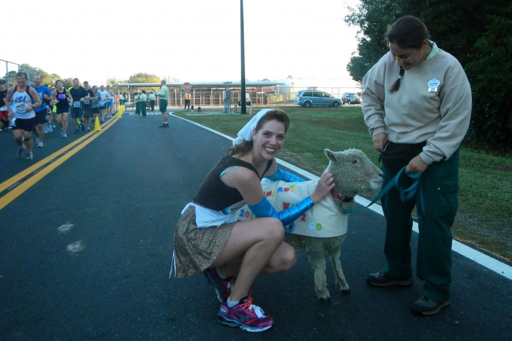 Walt Disney World Marathon, Disney running, run Disney, Cinderella in rags