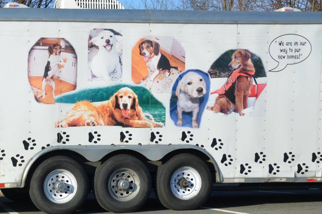 PETS LLC, dog transport truck