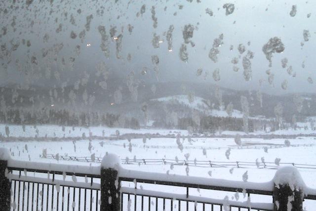 snowshoeing, showshoe, Colorado