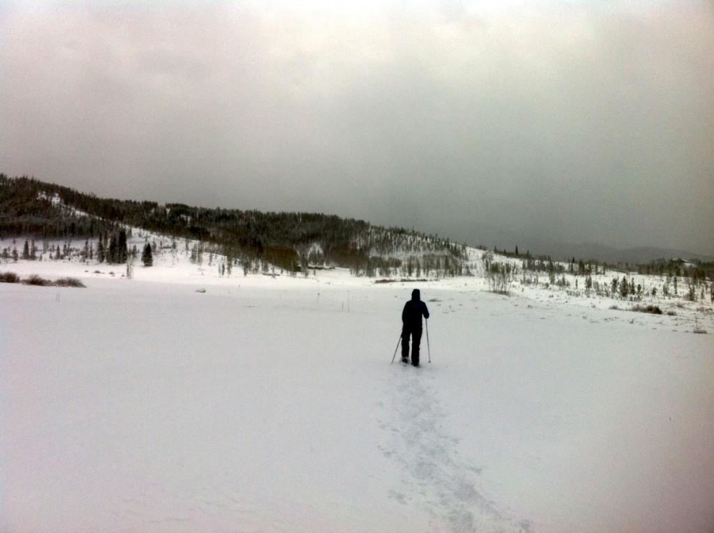 showshoeing, snowshoe, Colorado