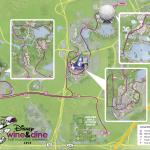 Disney Wine & Dine Half Marathon Course Map