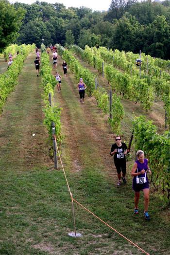 wine run, Harvest Stompede